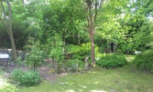 Limefield Terrace
